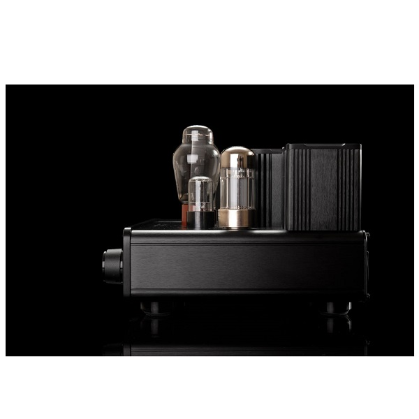 WooAudio WA22 Fully Balanced Headphone Amplifier (10)