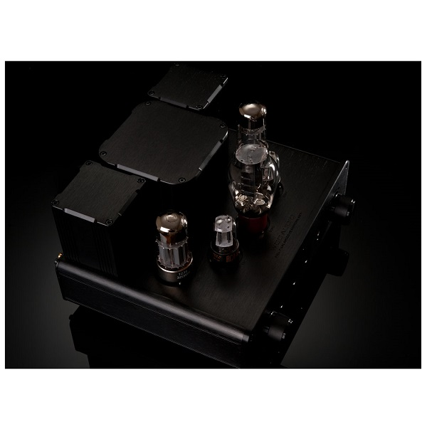WooAudio WA22 Fully Balanced Headphone Amplifier (11)