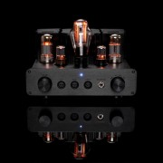 WooAudio WA22 Fully Balanced Headphone Amplifier (14)