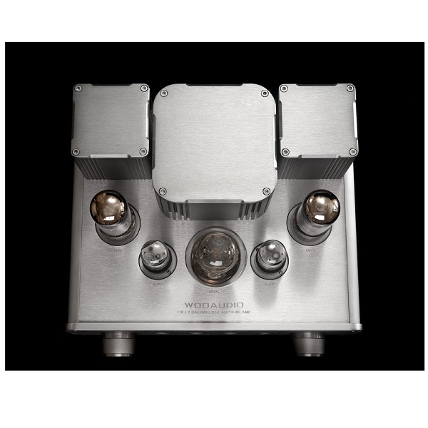 WooAudio WA22 Fully Balanced Headphone Amplifier (6)