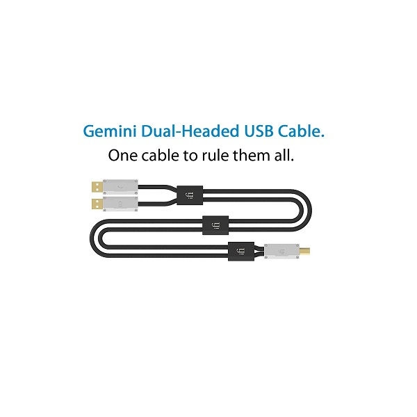 IFI Audio Gemini Dual Headed Audiophile USB Cable